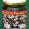 Mazzonetto / Concadalbero