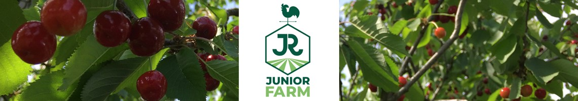 Junior Farm